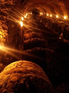 Wine Cellar _ ToKaj